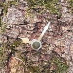 Uhren aus Wald-Fundstücken wie Rinde, Holz etc.