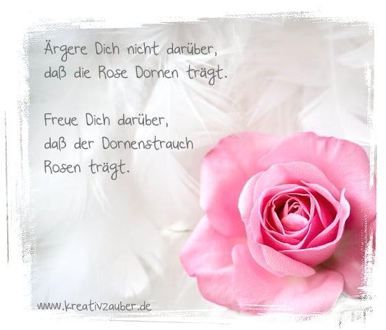 rose-e-card-zitat