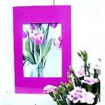 Foto-Postkarten – Grusskarten – DIY