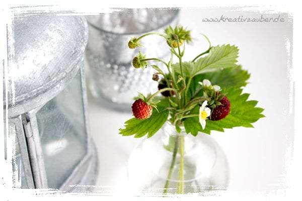 marmelade-erdbeeren-etiketten
